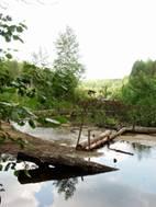 Протока между оз. Б. и М. Россохи